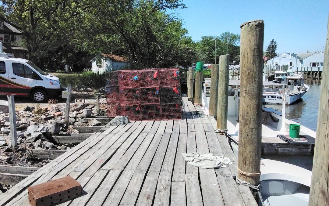 Crab Docks | Leipsic River | Delaware